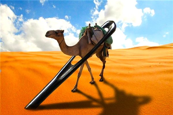 Rich Adventist funds research into needle eyes that can fit camels