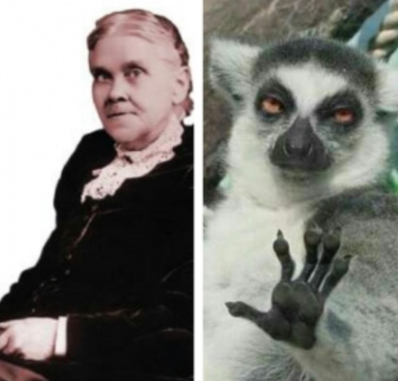 SLIDESHOW: If famous Adventists were animals